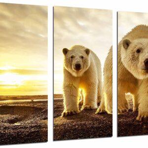 cuadros-osos-11